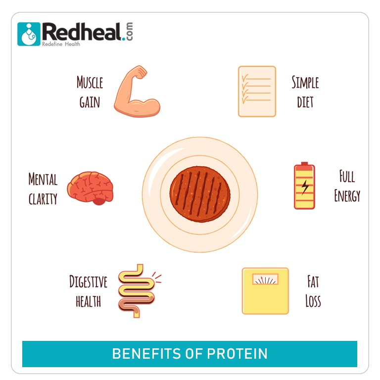 -	Protein helps you to keep a structured body and provides energy to stay active